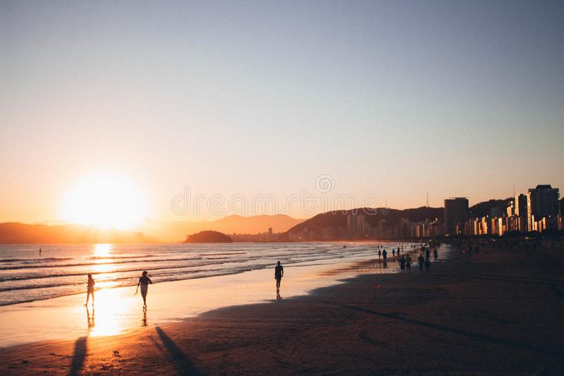 People Walking on Seashore during Golden Hour royalty free stock image