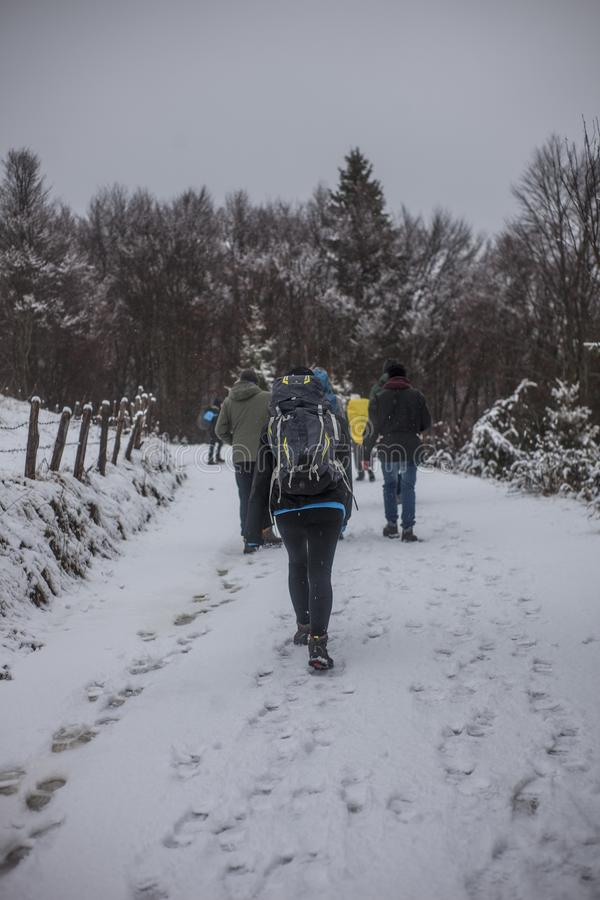 People Walking on Snowy Road during Winter royalty free stock photography