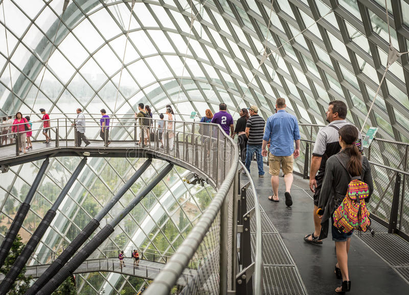 Download People On Walkway In Cloud Forest, Singapore Editorial Stock Image - Image: 36675359