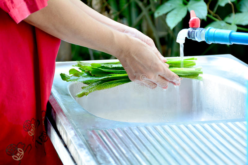 People washing vegetable by water. People washing vegetable by water in kitchen sink stock images