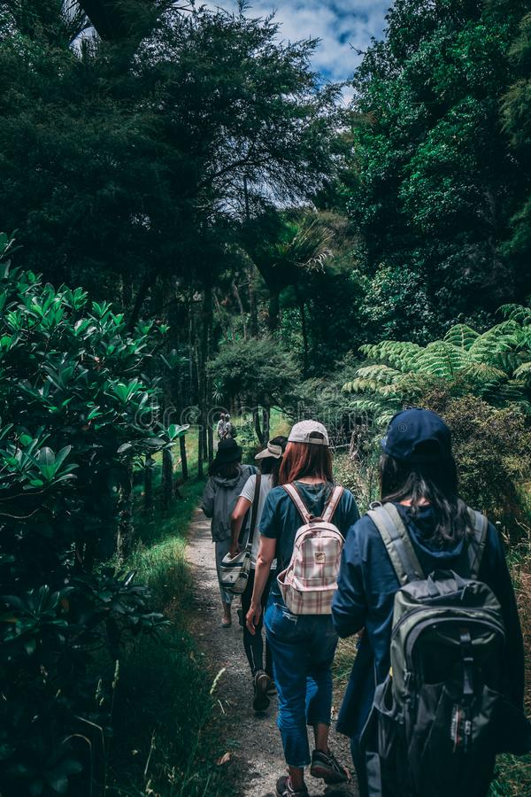People Wearing Backpacks Walking on Pathway Near Green Leaf Plants royalty free stock photography