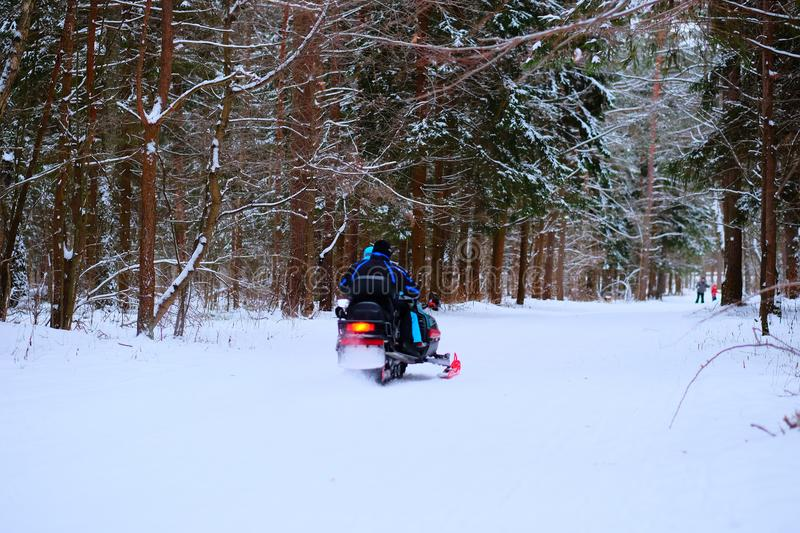 People in winter forest, ride on a snowmobile and skiing. royalty free stock photos
