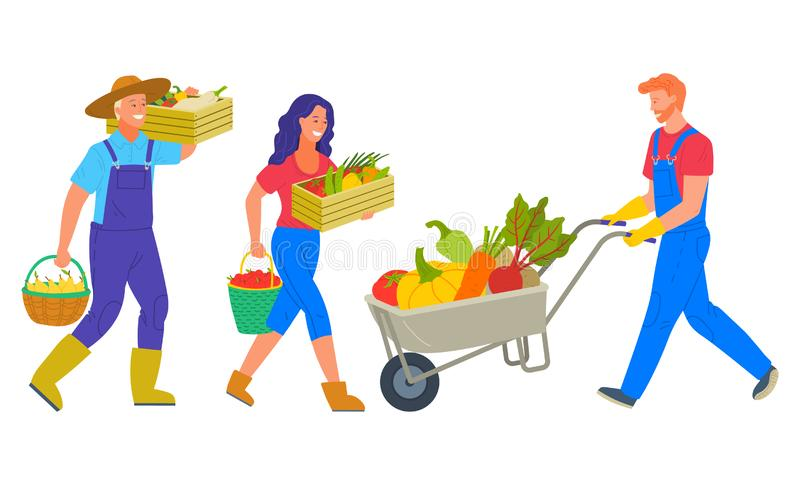 People Working on Farm Agrarians Harvesting Team. People harvesting on farm vector, isolated man and woman carrying pire vegetables. Character with cart vector illustration
