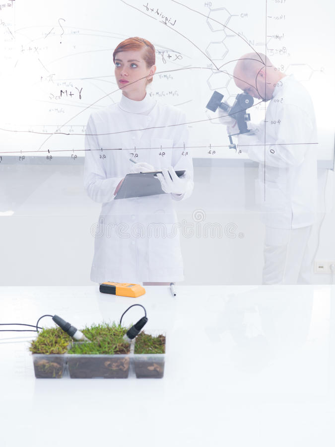 Download People Working In Laboratory Stock Photo - Image of entrepreneur, green: 31258168