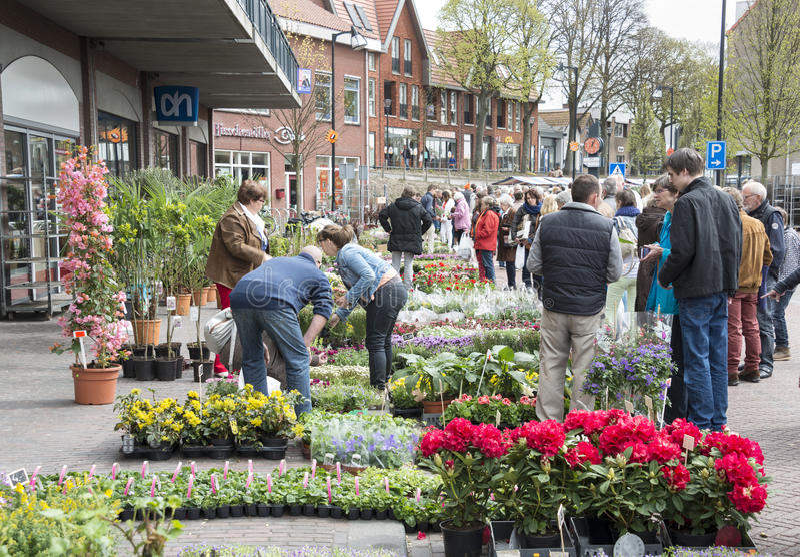 Peopleshopping på blommamarknaden royaltyfri bild