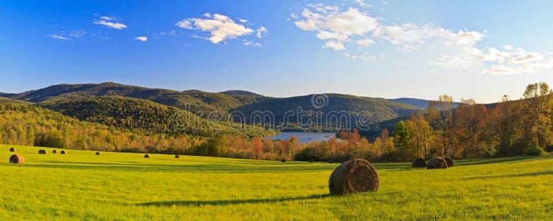 Pepacton Heu-Feld im Herbst lizenzfreies stockfoto