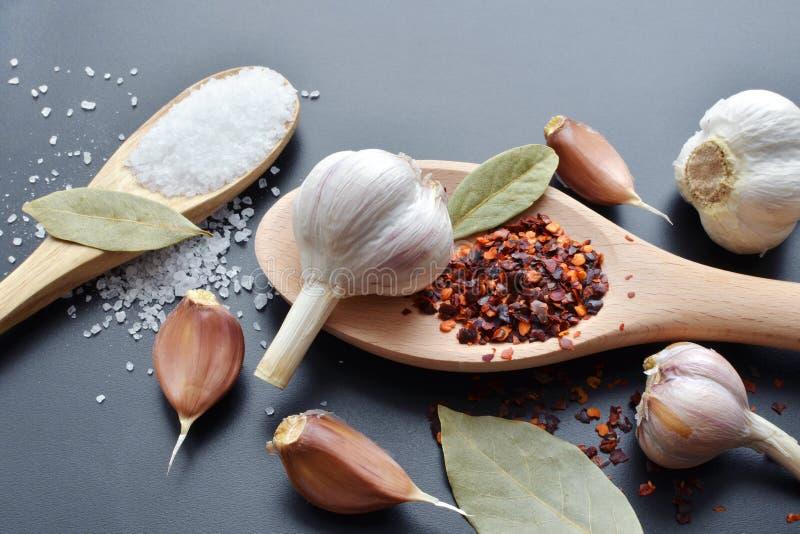 Pepe, aglio, foglia di alloro e spezie del sale marino in cucchiaio di legno fotografie stock libere da diritti