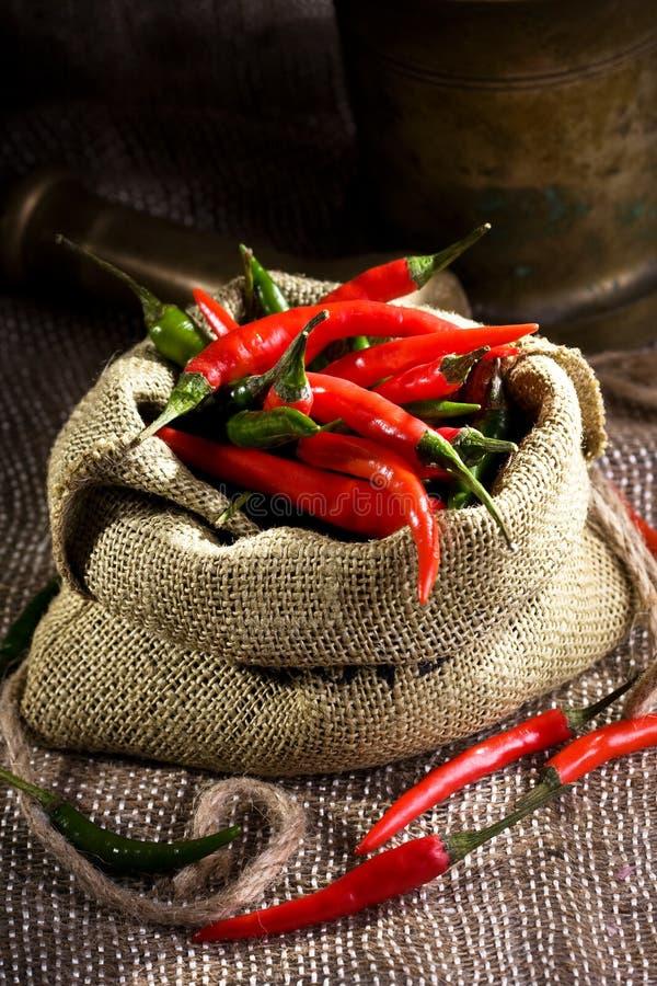 Pepe di peperoncino rosso fotografie stock libere da diritti