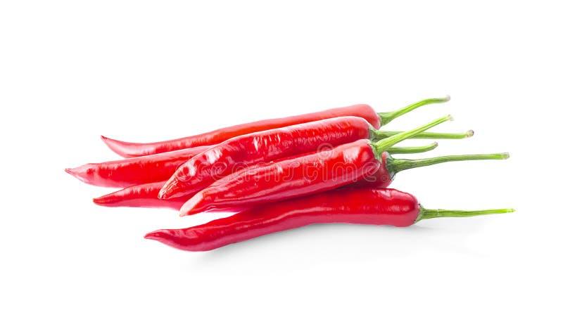 Pepe di peperoncino rosso isolato su priorità bassa bianca fotografia stock