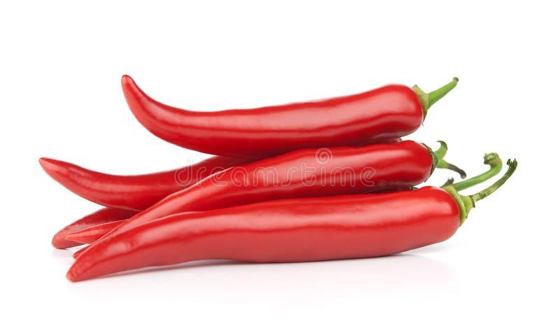 Pepe di peperoncino rosso rovente immagini stock libere da diritti