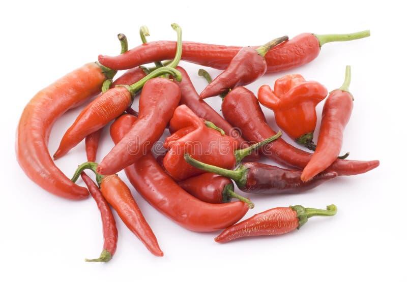 Pepe di peperoncino rosso rovente fotografie stock