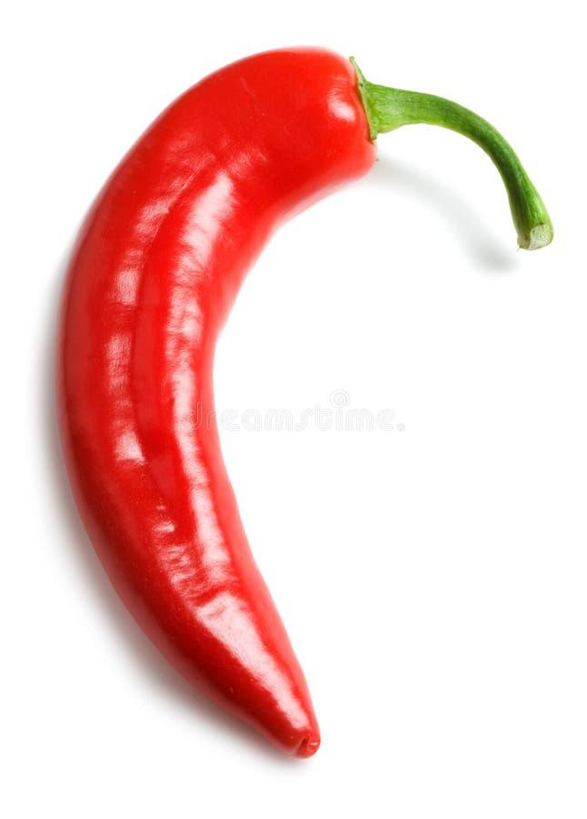 Pepe freddo rosso fotografia stock
