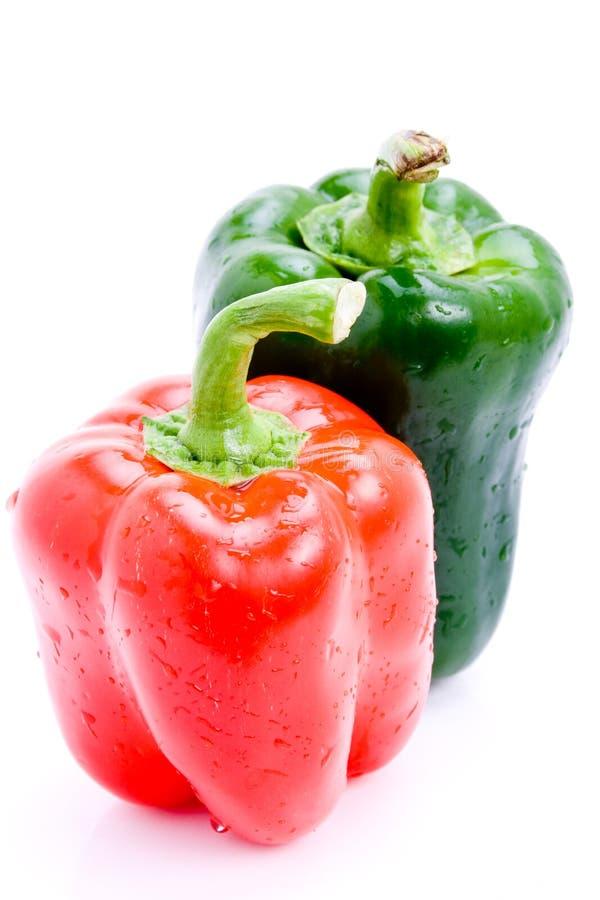 Pepe rosso e verde fresco fotografia stock libera da diritti