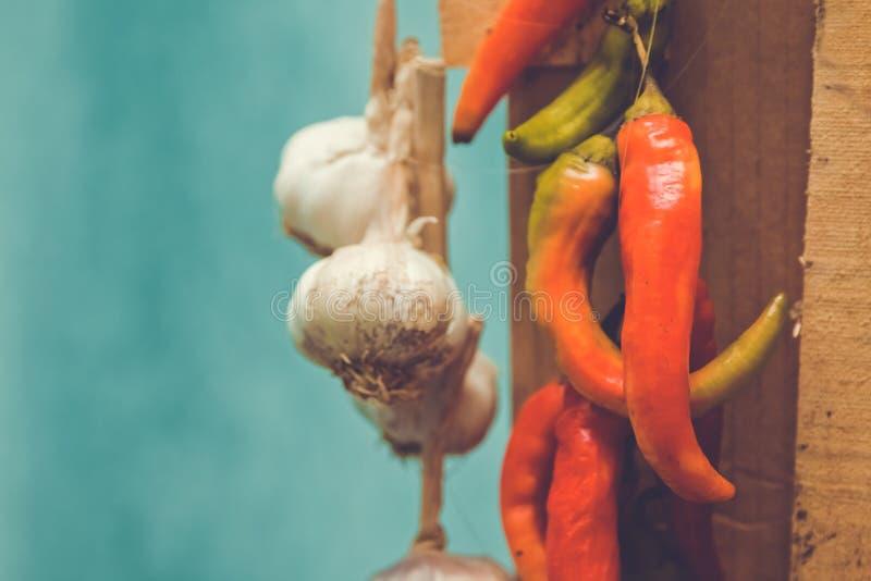 Pepe rosso ed aglio Peperoni caldi fotografia stock libera da diritti