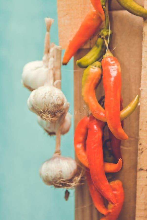Pepe rosso ed aglio Peperoni caldi immagini stock libere da diritti