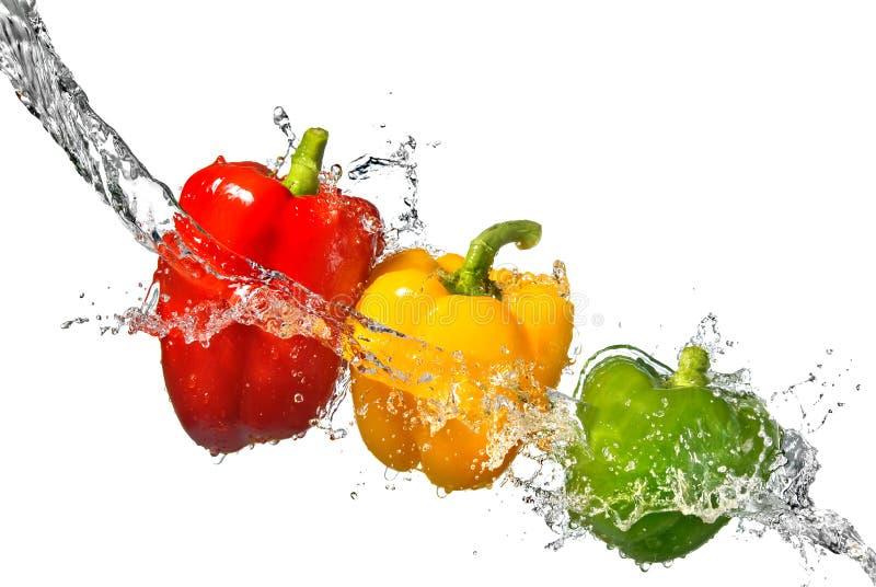 Pepe rosso, giallo e verde con la spruzzata dell'acqua immagine stock libera da diritti
