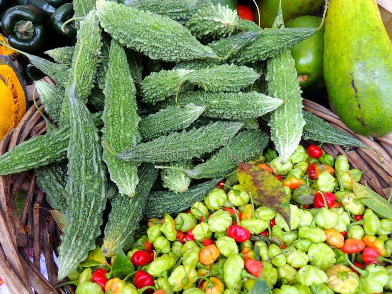 Peper en komkommers stock fotografie