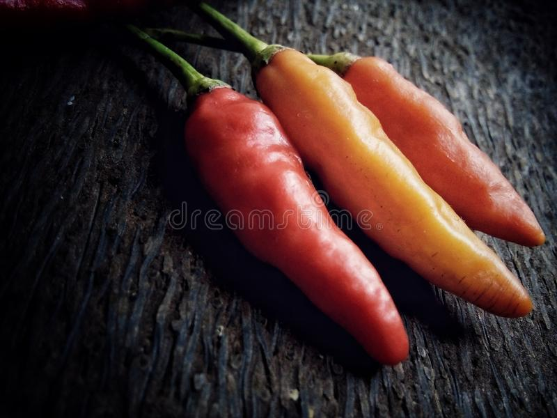 Peperoncini di cayenna fotografia stock libera da diritti