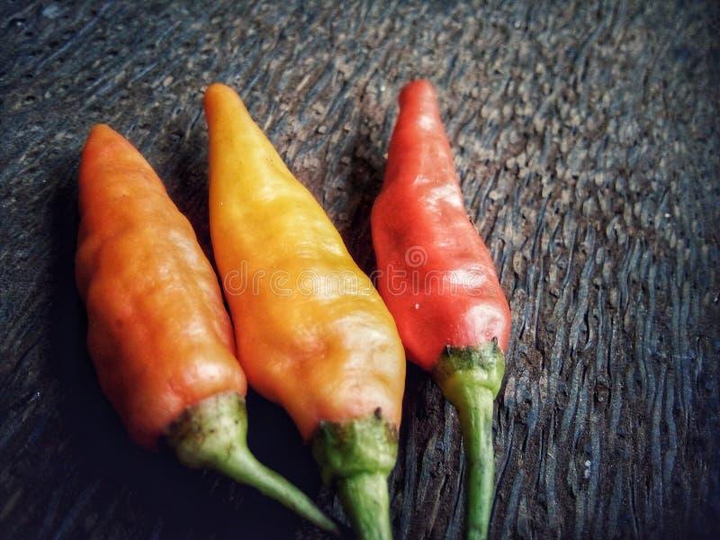 Peperoncini di cayenna immagine stock