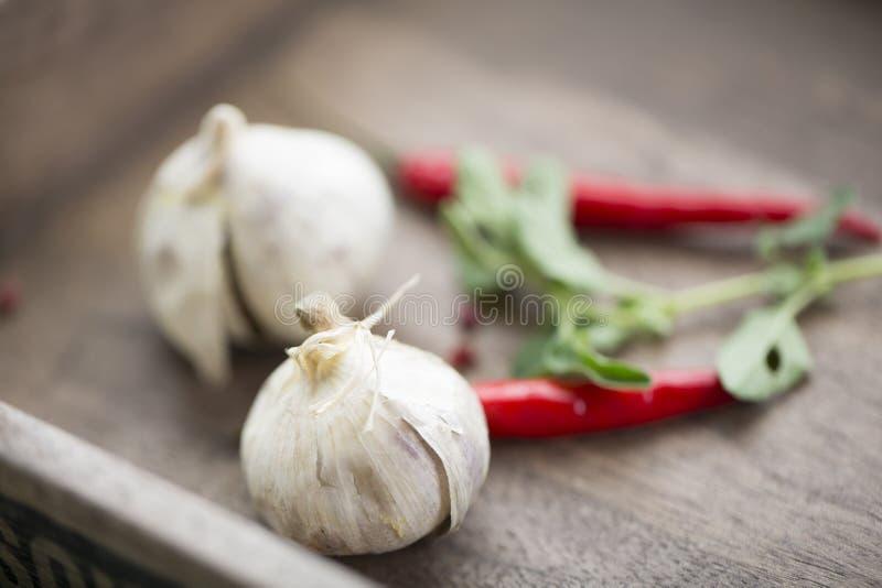 Peperoncini ed aglio roventi su legno fotografia stock