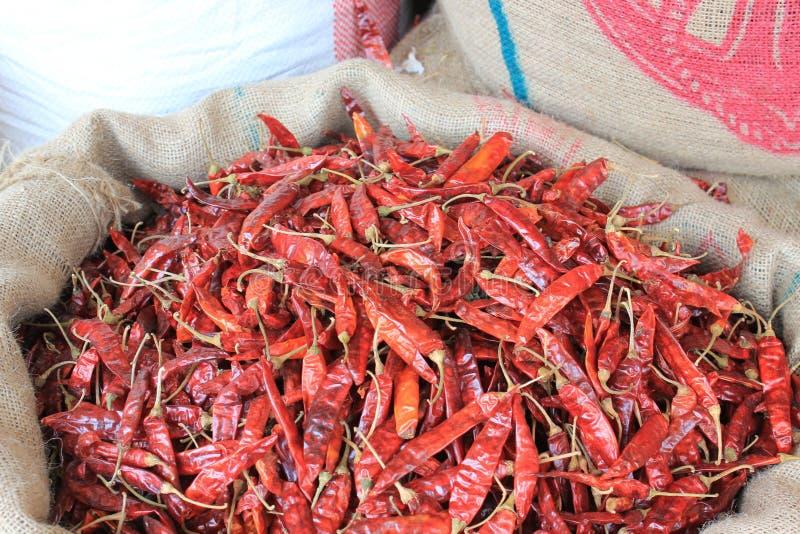 Peperoncini rossi dello Sri Lanka fotografia stock