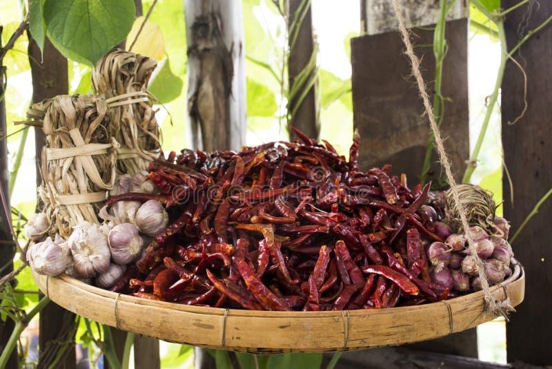 Peperoncini rossi ed aglio e scalogni secchi per la manifestazione e la vendita fotografie stock libere da diritti