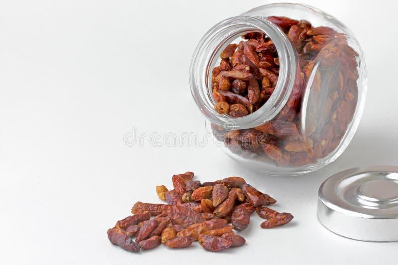 Peperoncini rossi secchi in piccolo barattolo fotografia stock