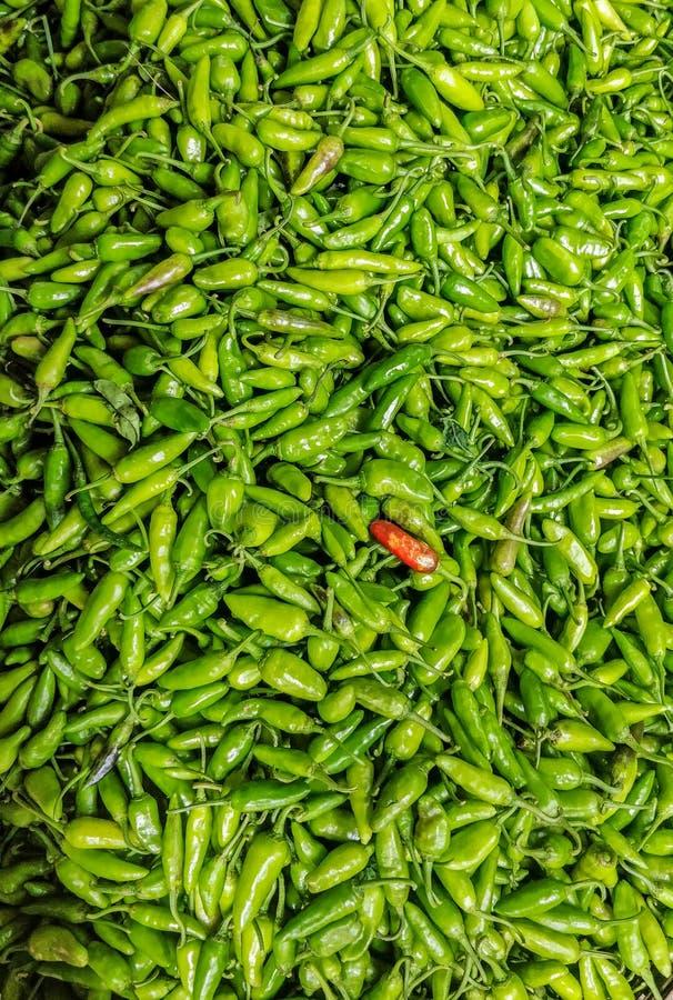 Peperoncini rossi verdi per vendita immagine stock libera da diritti