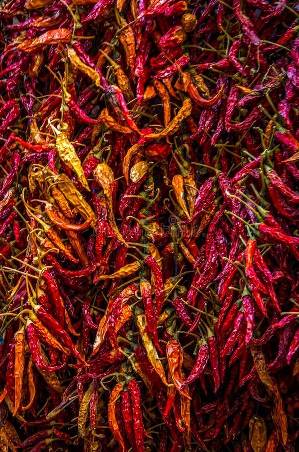 Peperoncini secchi variopinti al bazar italiano fotografia stock libera da diritti