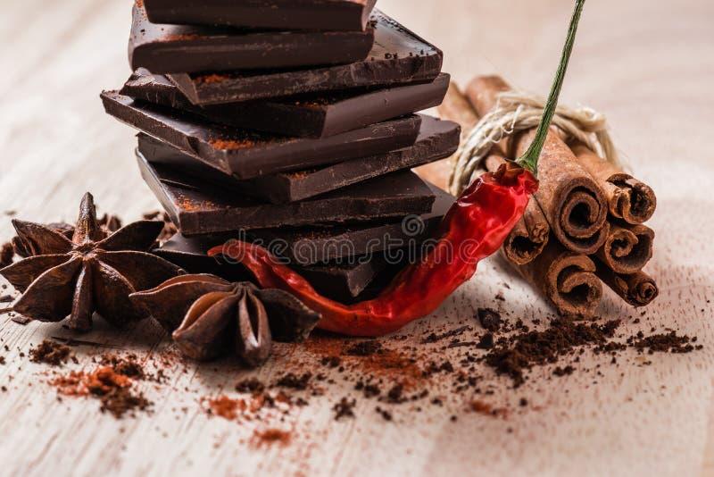 Peperoncino di cayenna asciutto con cioccolato ed alcune spezie fotografia stock