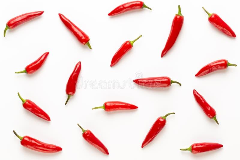 Peperoncino di cayenna dei peperoncini rossi o del peperoncino rosso isolato sul ritaglio bianco del fondo fotografie stock