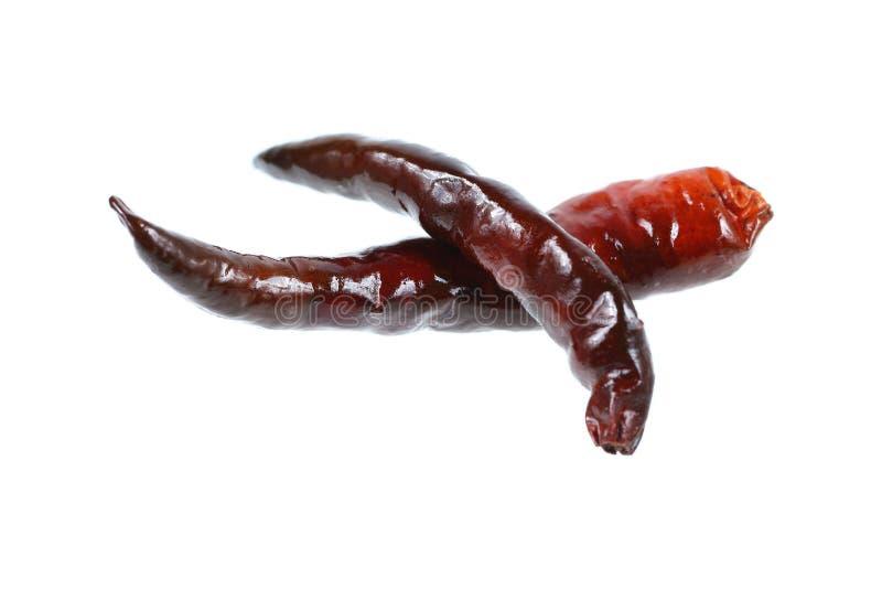 peperoncino rosso asciutto fritto isolato su bianco immagini stock