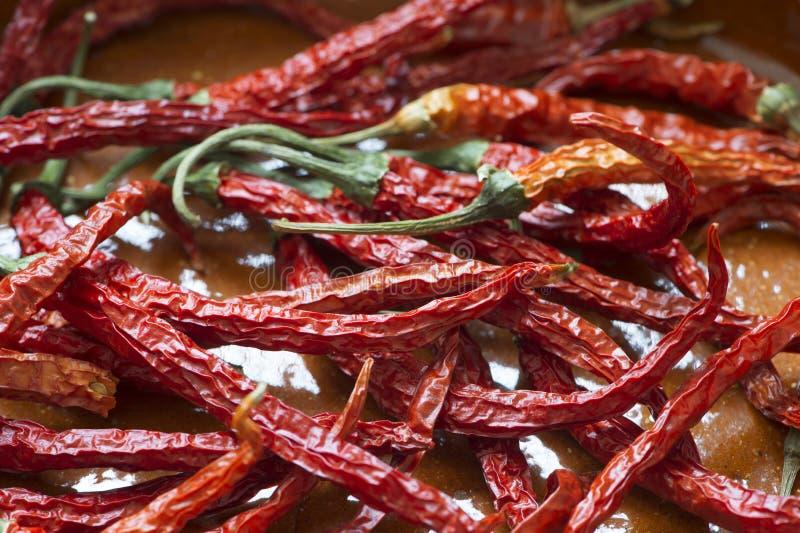 Peperoncino rosso secco fotografia stock