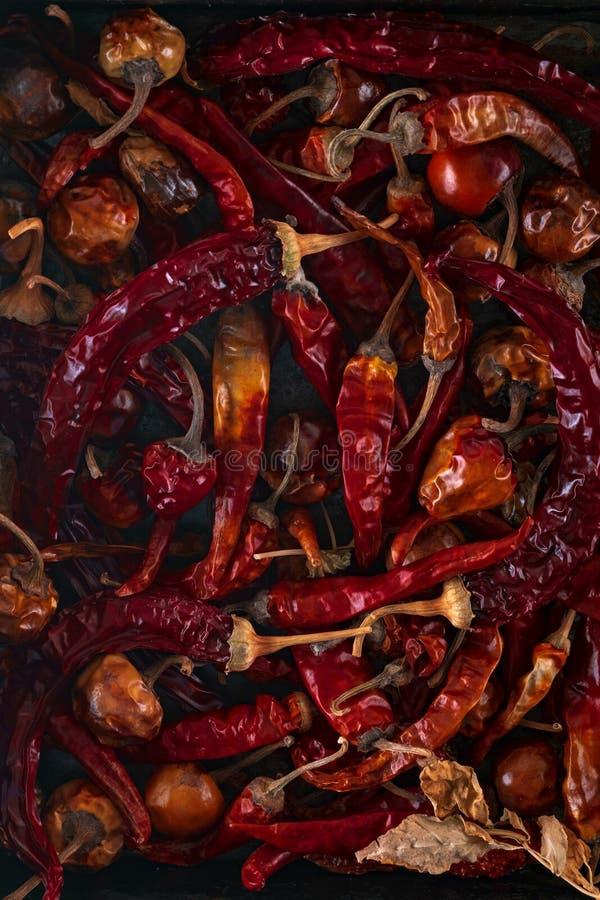 Peperoncino rosso secco sul fondo del ferro fotografia stock