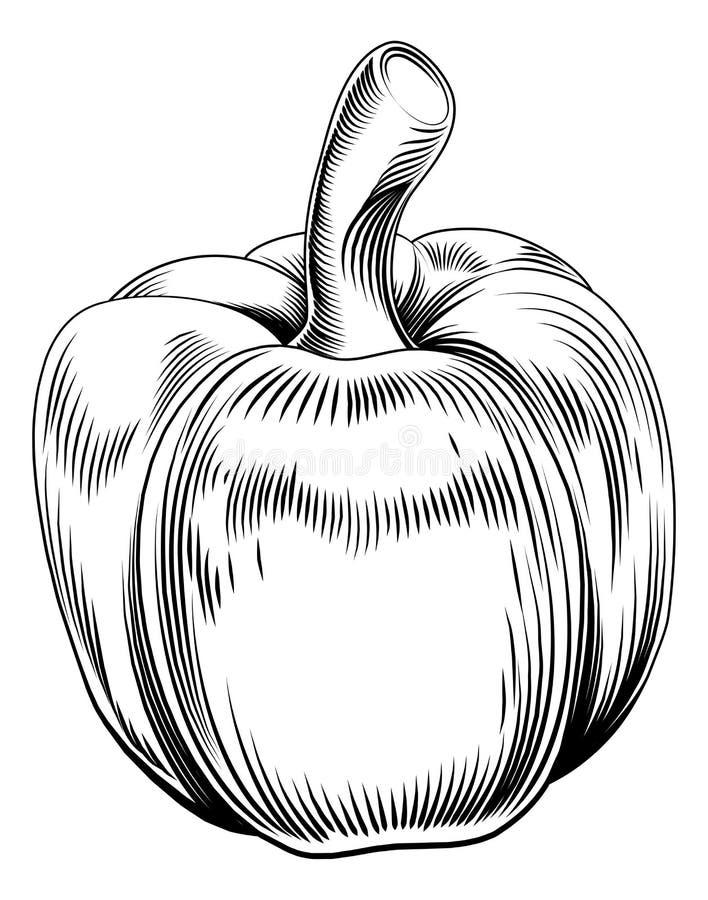 Peperone dolce del retro intaglio in legno d'annata illustrazione vettoriale