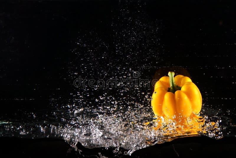 Peperone dolce giallo fresco con la spruzzata e la bolla dell'acqua Copi lo spazio Paprika Dropped gialla succosa in acqua sul ne fotografia stock libera da diritti