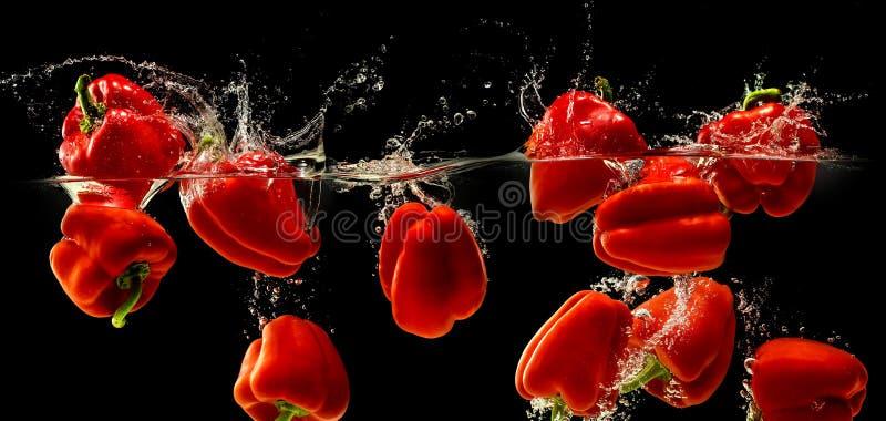 Peperone dolce rosso che cade in acqua immagine stock libera da diritti