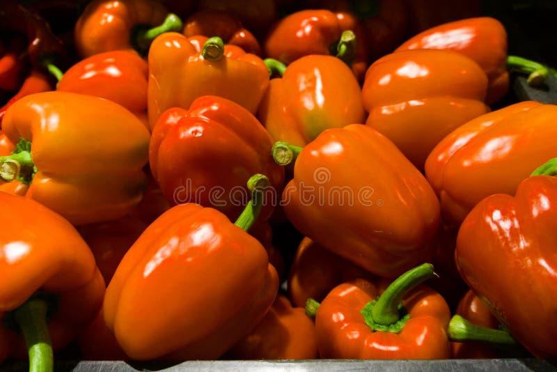 Peperone dolce rosso immagine stock libera da diritti