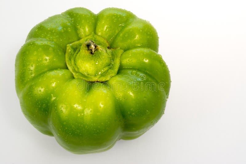Peperone dolce verde con le goccioline di acqua su bianco fotografia stock