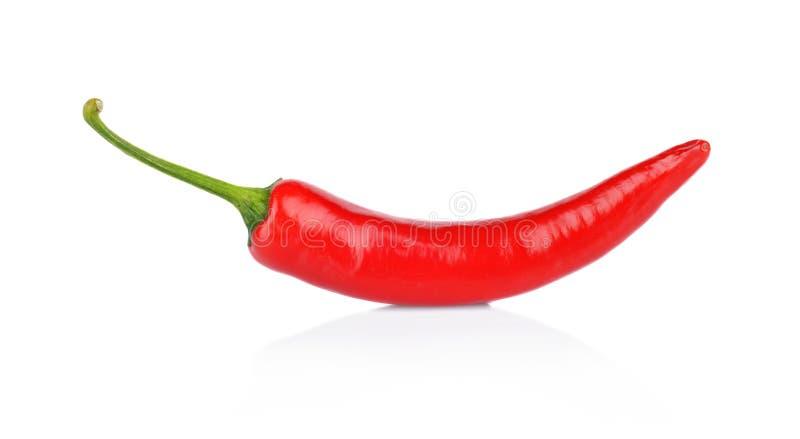 Peperone, peperoncino rosso isolato su fondo bianco immagini stock libere da diritti