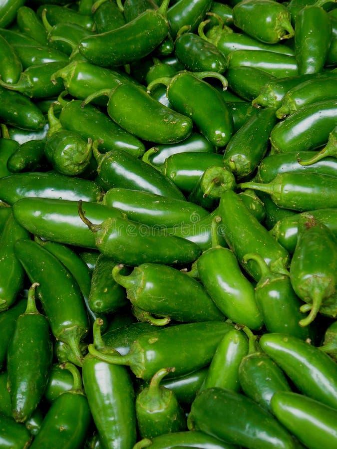 Peperoni del Jalapeno fotografia stock libera da diritti