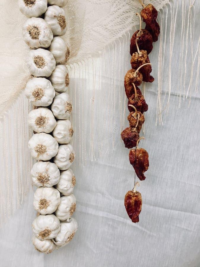 Peperoni dell'aglio secchi fotografia stock libera da diritti