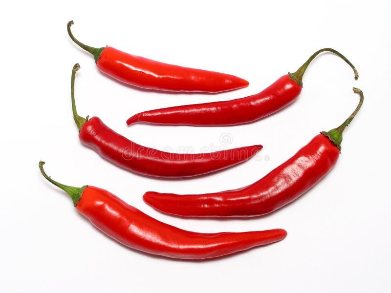 Peperoni di peperoncini rossi rossi fotografie stock libere da diritti