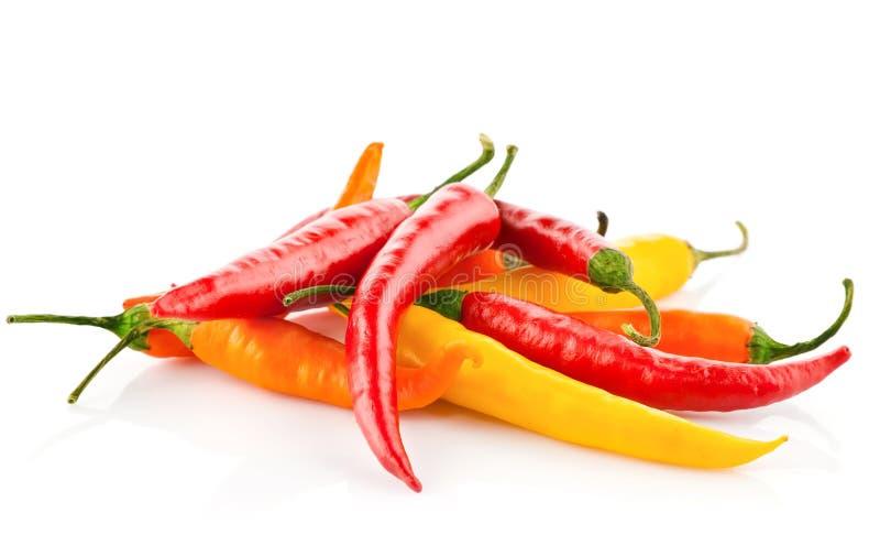 Peperoni di peperoncini rossi rossi isolati su bianco fotografia stock