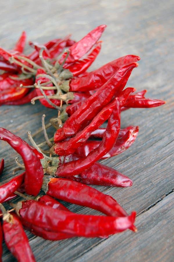 Peperoni di peperoncini rossi roventi immagine stock libera da diritti