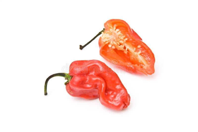 Peperoni di peperoncino rosso indiani ad ovest   fotografia stock