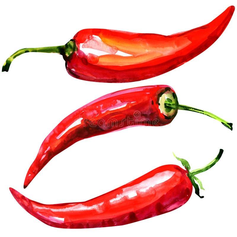 Peperoni di peperoncino rosso roventi su priorità bassa bianca illustrazione di stock