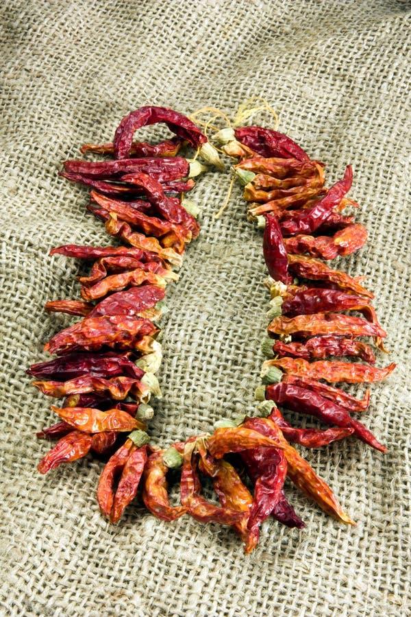 Peperoni di peperoncino rosso secchi fotografia stock