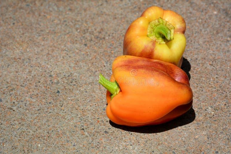 Peperoni dolci variopinti fotografia stock