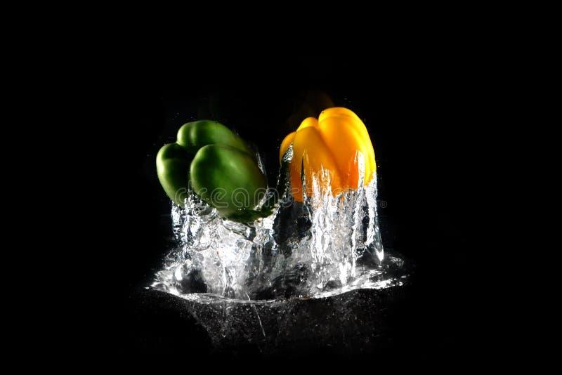 Peperoni dolci verdi e gialli freschi con la spruzzata dell'acqua e bolla isolata Gruppo di paprica dello spazio sano della copia fotografia stock libera da diritti